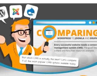 A Definitive CMS Comparison Guide - WordPress, Joomla or Drupal (Infographic)